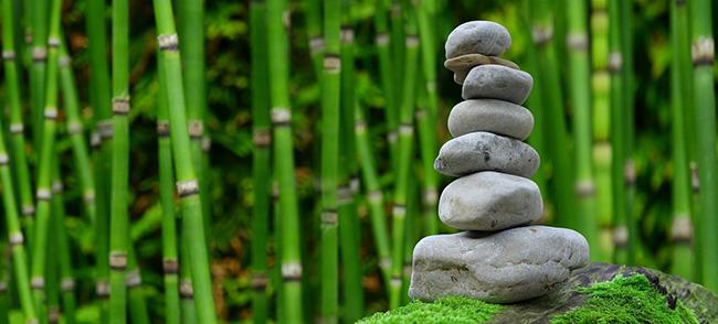 steine-bambus